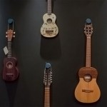 Best Ukulele For Begginers