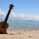 Best Ukuleles For The Money