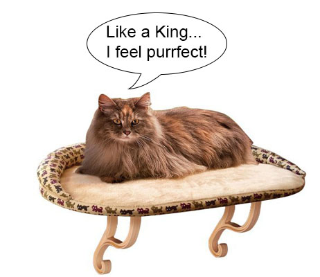 Cat Gifts for Cat Lovers No.5: Deluxe Kitty Sill with Bolster