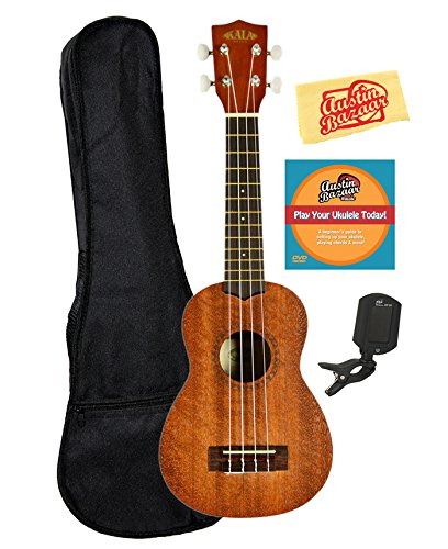 Example: Best Ukulele for Beginners