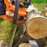 Post Image: Best Chainsaw Chain for Firewood Cutting